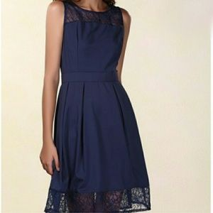 Dresses & Skirts - Navy Blue Lace Fit and Flare Dress